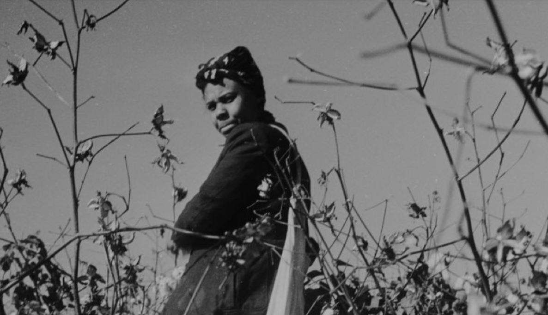 Der Zusammenhang von Nachhaltig, Frauen und Abolitionismus