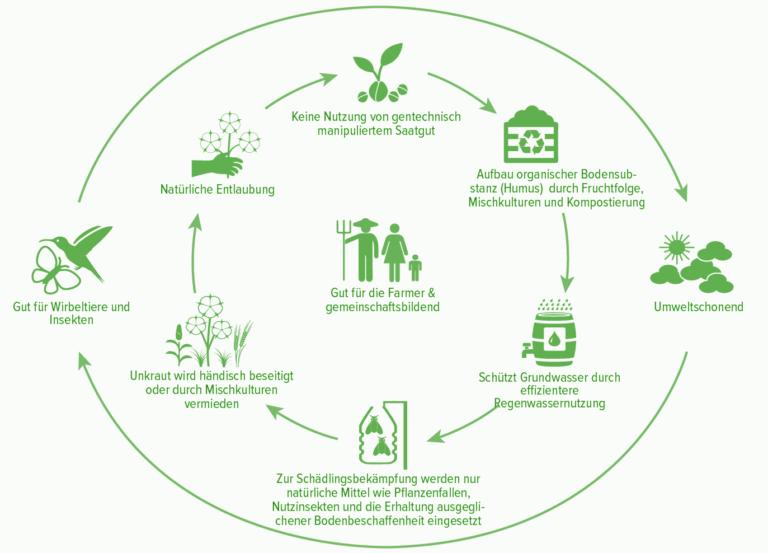 Was ist Bio Baumwolle